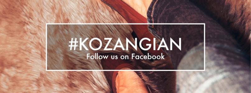 Follow The Kozangian Way